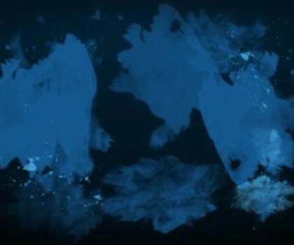 video:akvariumet i bergen